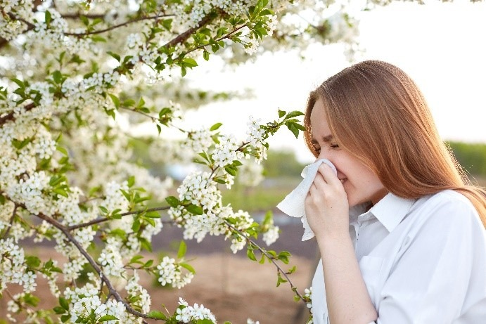 menopause symptoms allergies