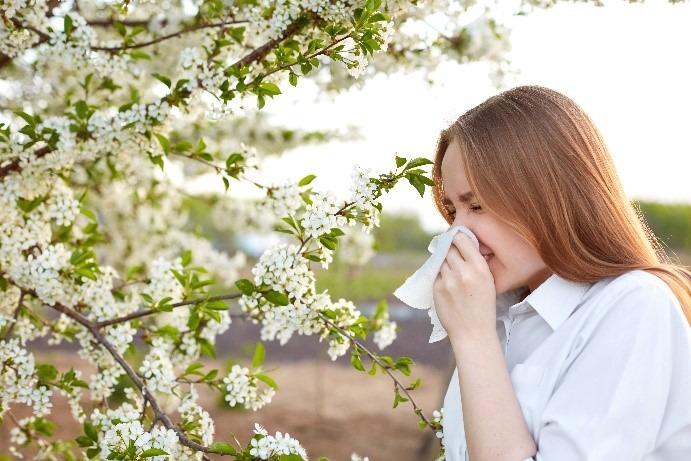menopause symptoms allergies
