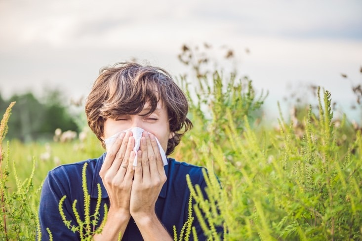 perimenopause and allergies
